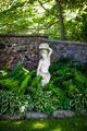 Shady perennial garden - PhotoDune Item for Sale