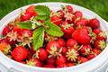 Freshly picked strawberries - PhotoDune Item for Sale