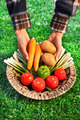 Farmer with a basket full of biological vegetables - PhotoDune Item for Sale