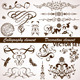 Calligraphic and Floral Element - GraphicRiver Item for Sale