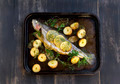 Baked Rainbow Trout - PhotoDune Item for Sale