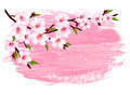 Pink paint sakura branch banner - PhotoDune Item for Sale