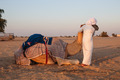 boy and a camel in the desert - PhotoDune Item for Sale
