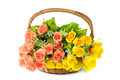 flowers in basket isolate on white background - PhotoDune Item for Sale