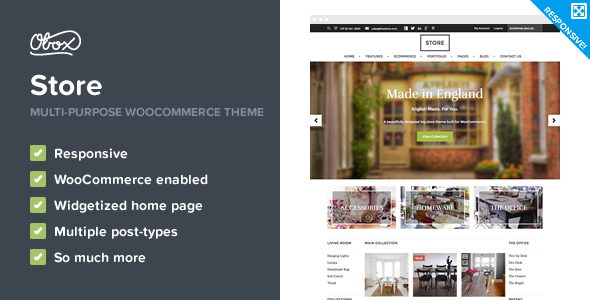 Store - eCommerce WordPress Theme - eCommerce WordPress