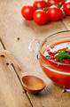 Gazpacho tomato  soup - PhotoDune Item for Sale