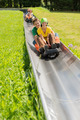 Happy Couples Enjoying Alpine Coaster Luge - PhotoDune Item for Sale