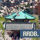 Cherry Blossom at Ueno Temple - VideoHive Item for Sale