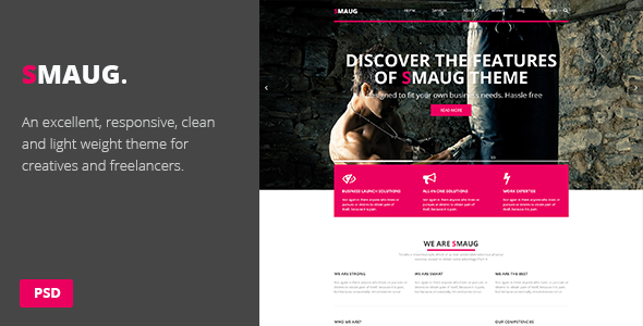 ThemeForest Smaug One Page PSD Theme 7439738