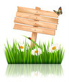 Nature background with green grass and flowers and wooden sign. - PhotoDune Item for Sale