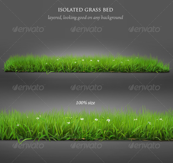 Isolated Grass - Nature Backgrounds
