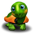 Green Turtle Baby 3D - PhotoDune Item for Sale