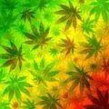 Marijuana Leaves Rasta Pattern - PhotoDune Item for Sale