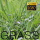 The Green Grass - VideoHive Item for Sale