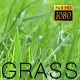 The Green Grass 2 - VideoHive Item for Sale