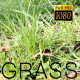 The Green Grass 5 - VideoHive Item for Sale