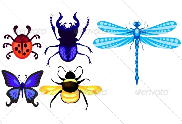 GraphicRiver Insect Set 7500081