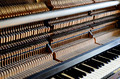 inside the piano: string, pins and hammers - PhotoDune Item for Sale