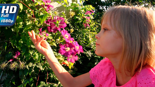VideoHive Girl and Tropical Flowers 7517620