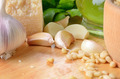 Pesto sauce Ingredients - PhotoDune Item for Sale