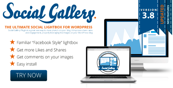Social Gallery WordPress Photo Viewer Plugin - CodeCanyon Item for Sale