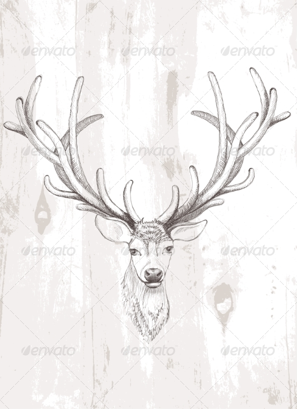 GraphicRiver Vector Deer 7536719