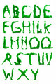 people green alphabet letters - PhotoDune Item for Sale
