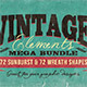 Vintage Elements Bundle - GraphicRiver Item for Sale