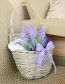 Lavender basket - PhotoDune Item for Sale