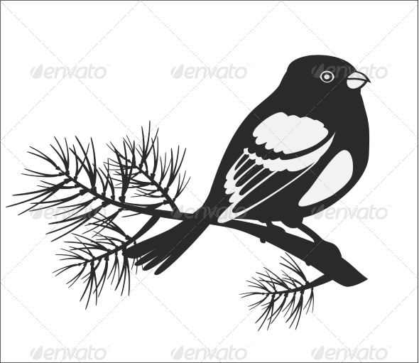 GraphicRiver Black Silhouette of Bullfinch 7573684