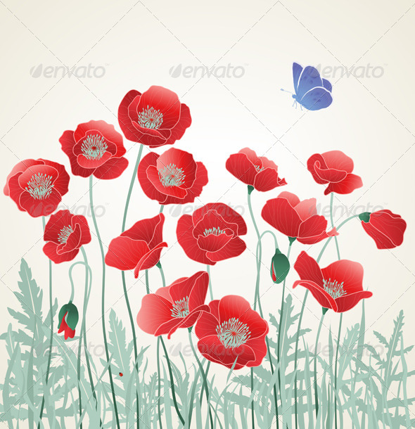 GraphicRiver Field of Red Poppies 7582656