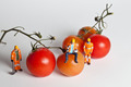 Miniature people in action with tomatoes - PhotoDune Item for Sale