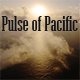Pulse of Pacific