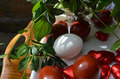 White and Red Dyed Eggs with Leaves and Ladybug - PhotoDune Item for Sale