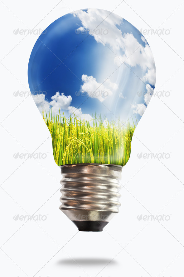 light bulb with paddy rice - Stock Photo - Images