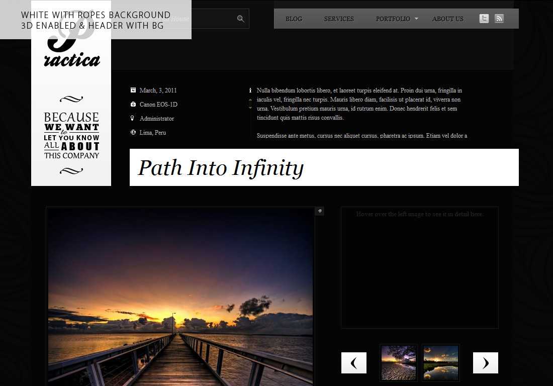 Practica Portfolio - Sophisticated WordPress Theme