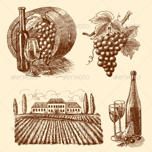 GraphicRiver Wine Sketch Decorative Set 7606557