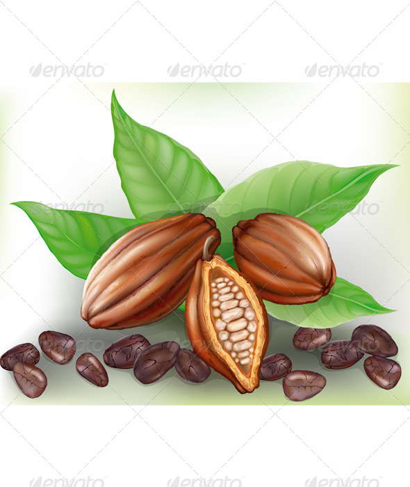 GraphicRiver Cacao Fruit and Grains 7614903