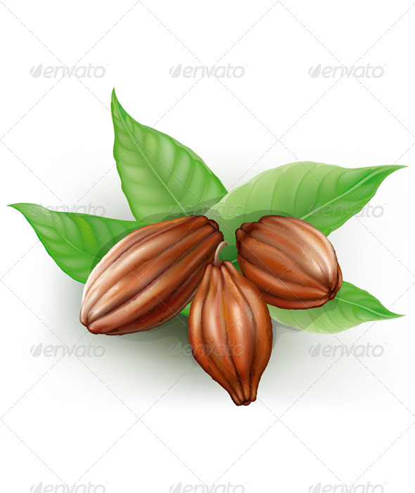 GraphicRiver Cacao Fruits 7614913