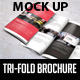 Tri-Fold Brochure Mock Up - GraphicRiver Item for Sale