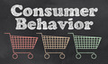 Consumer Behavior - PhotoDune Item for Sale