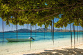 Boat and trees on a tropical beach in Fiji - PhotoDune Item for Sale
