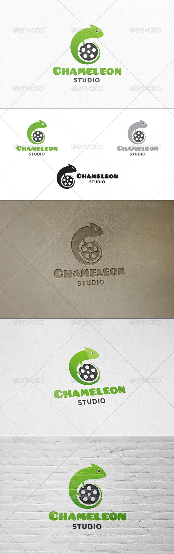 GraphicRiver Chameleon Studio Logo Template 7668408