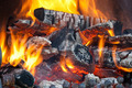 Wood logs burning in the fireplace - PhotoDune Item for Sale