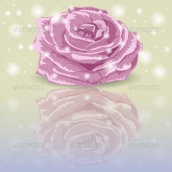 GraphicRiver Pink Rose 7673409