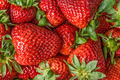 Strawberries background - PhotoDune Item for Sale
