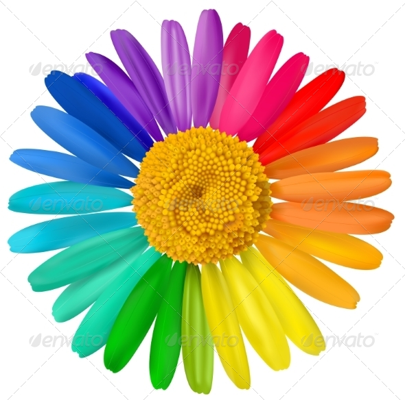 GraphicRiver Vector Multicolored Daisy Flower Isolated 7687794