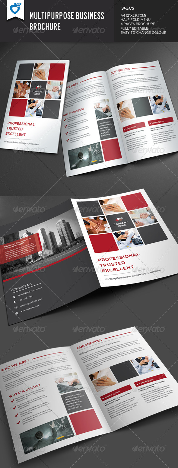 GraphicRiver Multipurpose Business Brochure 7678751