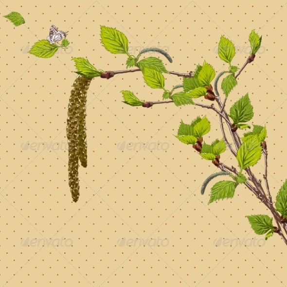 GraphicRiver Vintage Card with Birch Twigs 7717877