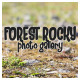 Forest Rocky Photo Gallery - VideoHive Item for Sale